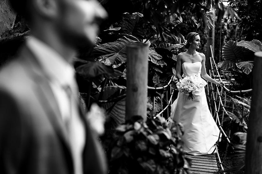 matrimonio nella giungla